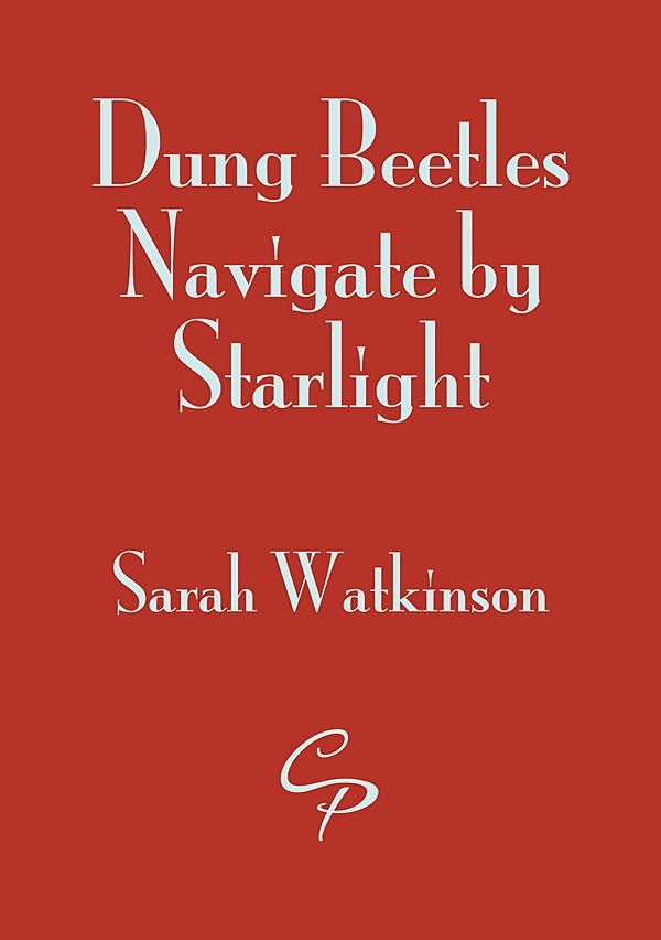 Dung Beetles Navigate by Starlight