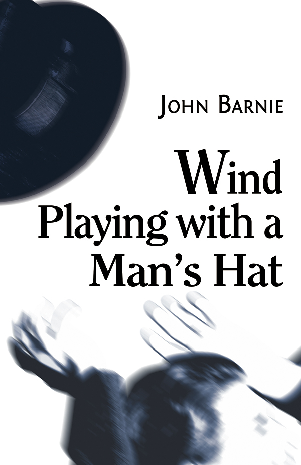 Wind Playing with a Man's Hat